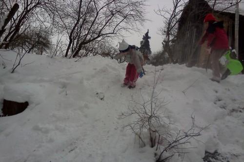 Kuta, gyerek, hó