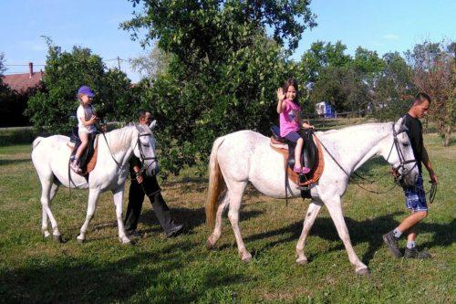 Lovagolni és lovakat simogatni minden gyerek imád