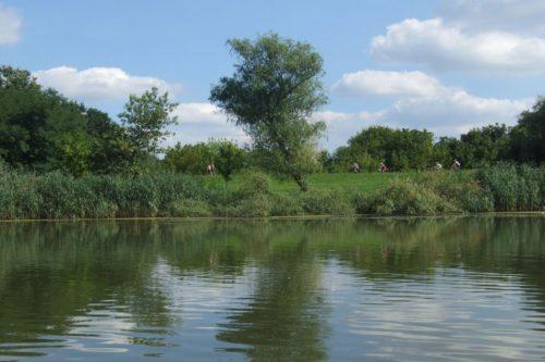 Tisza tó 7 ok